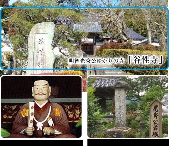 祝2020年NHK大河ドラマ「明智光秀」に決定!麒麟がくる 主演:長谷川博己